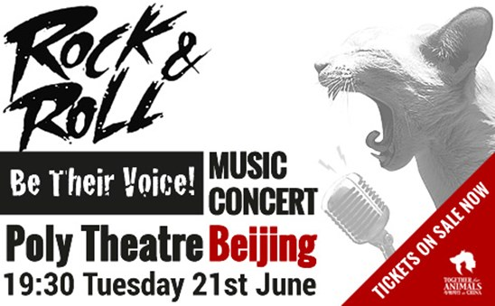 Rock Music Concert - Be Their Voice!