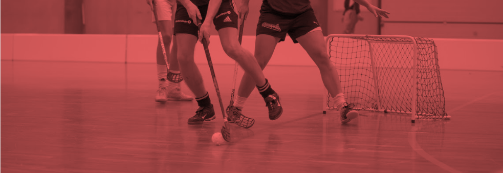 Floorball Open