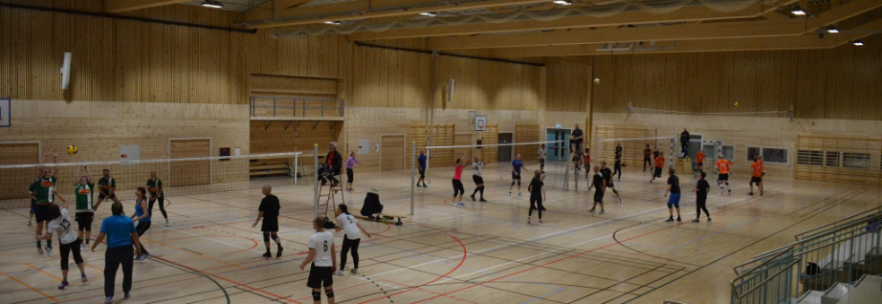 Volleyballserien 2019/2020