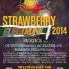 2014 Strawberry Music Festival EDM Stage